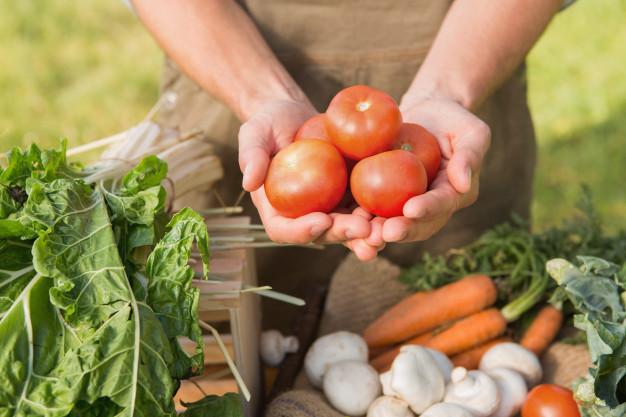 tìm nguồn hàng mở cửa hàng thực phẩm nông sản
