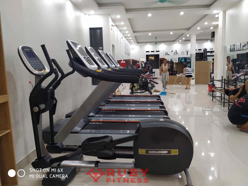 Các loại máy trong phòng tập gym