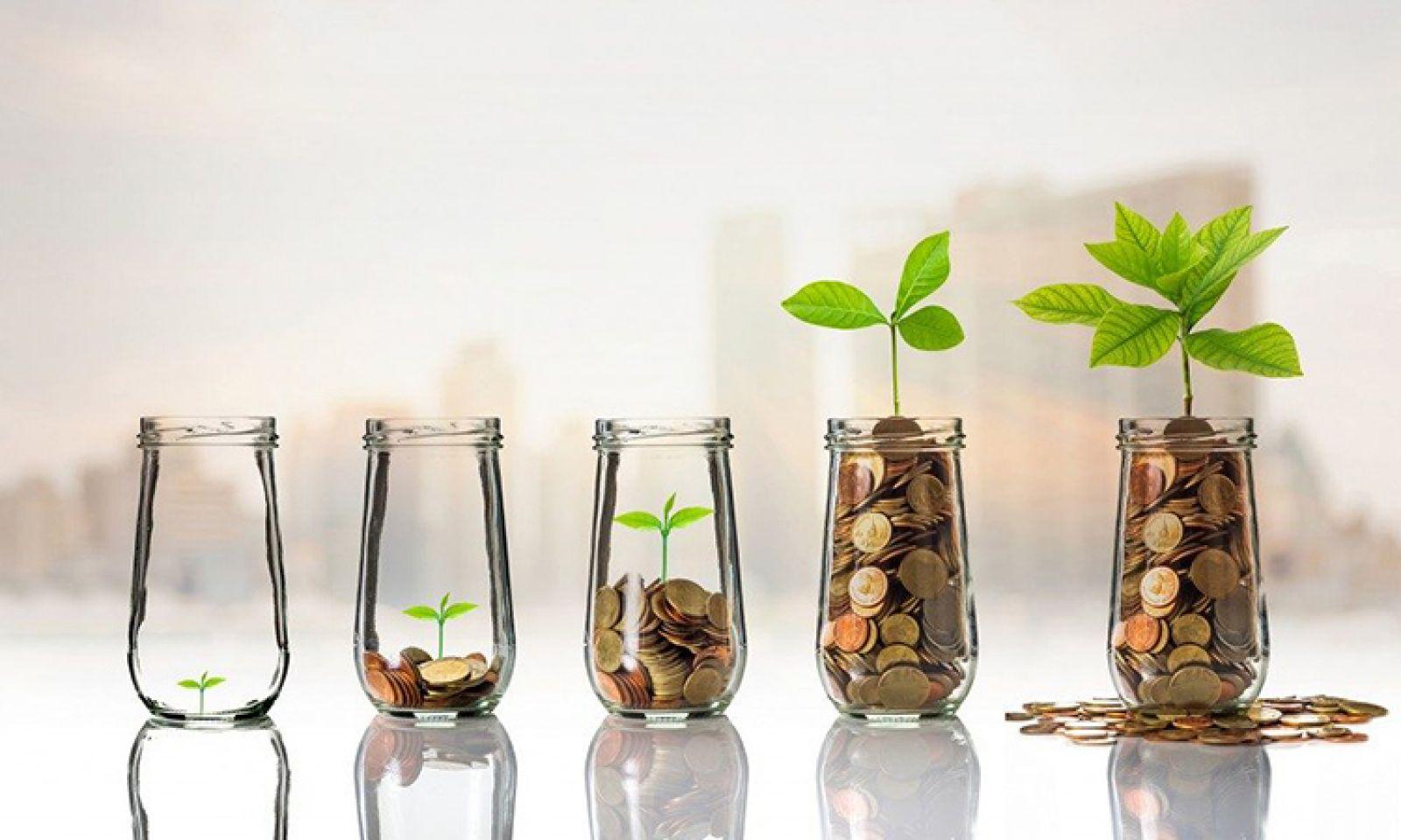 Cách quản lý tài chính