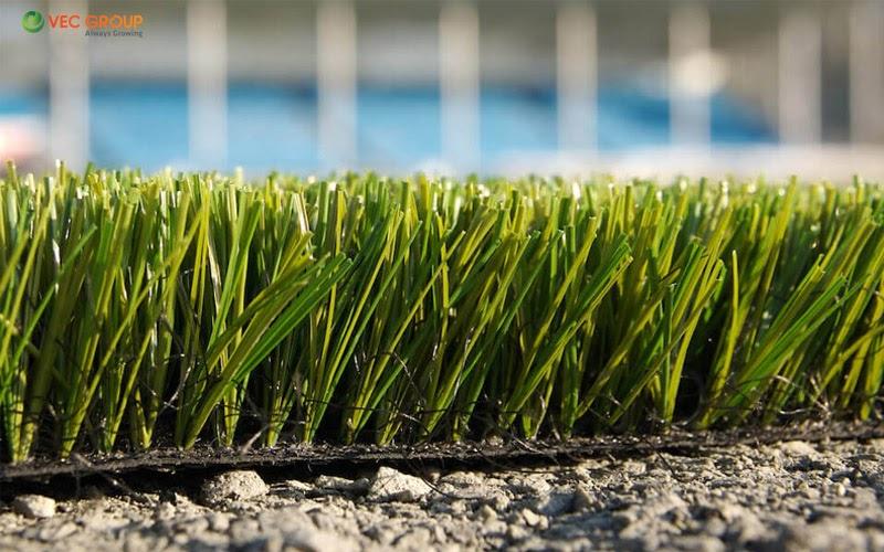 Tại VEC GROUP luôn sẵn các mẫu cỏ nhân tạo để phục vụ khách hàng