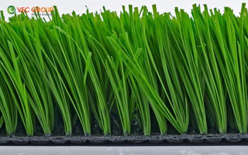 Mẫu cỏ nhân tạo sân bóng đá