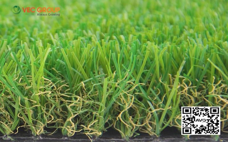 Mẫu cỏ sân vườn cao 3cm, phù hợp làm thảm trải sân chơi cho trường mầm non